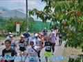 2016年6月5日果樹王国ひがしねさくらんぼマラソン もーもーちゃん(牛仮装)参戦録 No.009